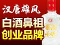 剑南汉唐雄风白酒