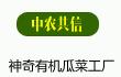 中农共信有机瓜菜工厂_有机瓜菜!新科技商机
