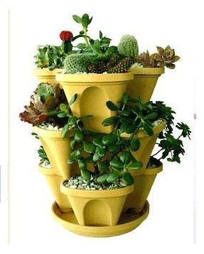 植彩坊组合花盆