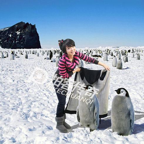 拍客传奇特效摄影产品-拍客传奇特效摄影企鹅合影