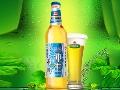 金士百纯生啤酒