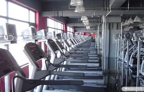 信息中心 青鸟健身房在什么地方?