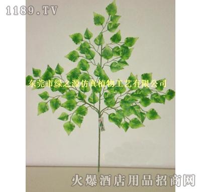 绿之源仿真叶-绿边桦树叶