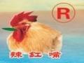 辣红嘴川菜
