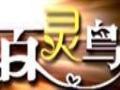 百灵鸟KTV