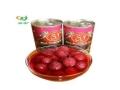 鑫语石季水果罐头