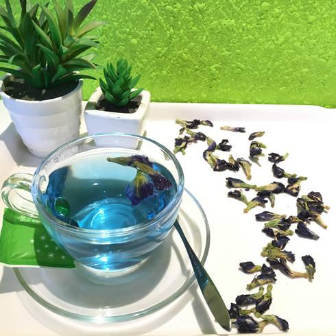 蓝色蝶豆花