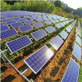 亿清佳华太阳能-农田发电效果图