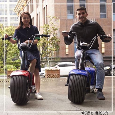 名爱新能源智能车-大双轮