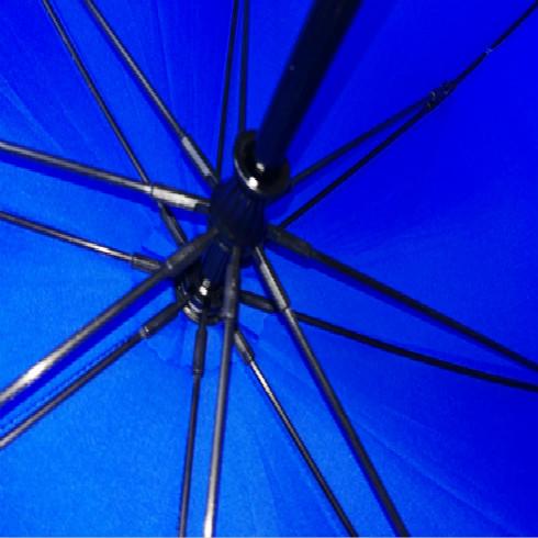 蓝色子母伞