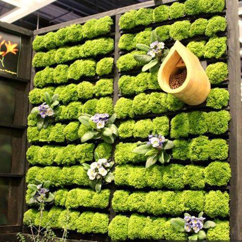 智能水培植物背景墙