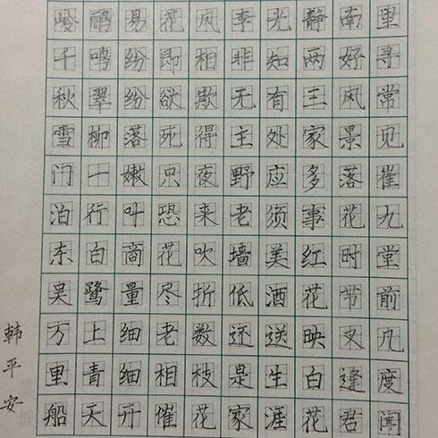 TOP状元全语文培训-练字