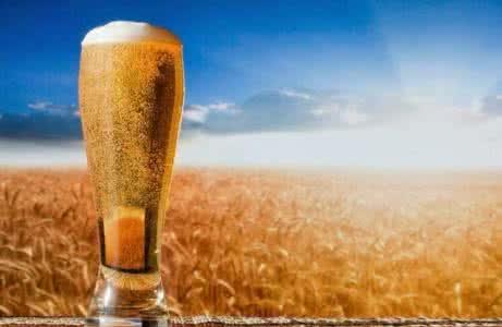 科罗娜-冰爽啤酒