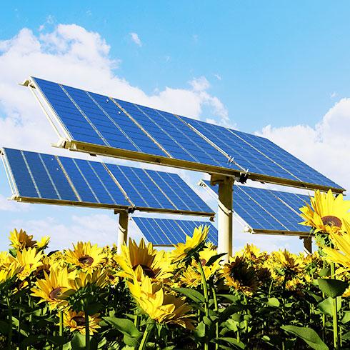 兆菱光伏发电-太阳能板架设