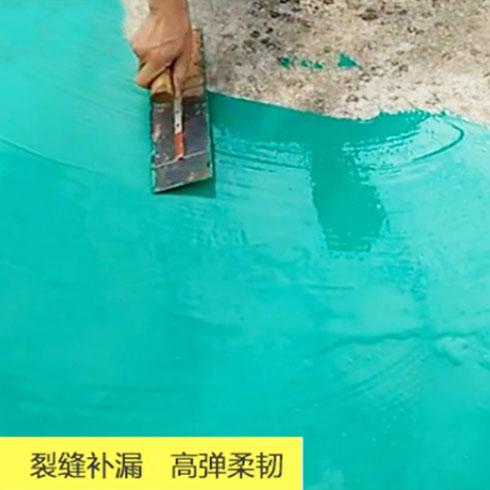 特力森防水涂料-裂缝补漏