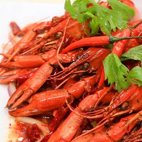 海错岛蓝魔龙虾-香辣小龙虾