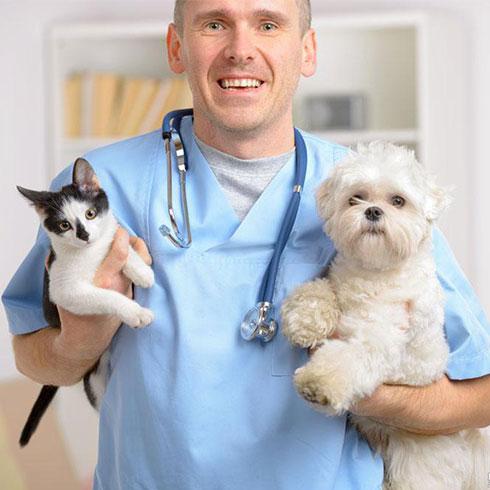 大嘴狗宠物店-兽医与宠物合照
