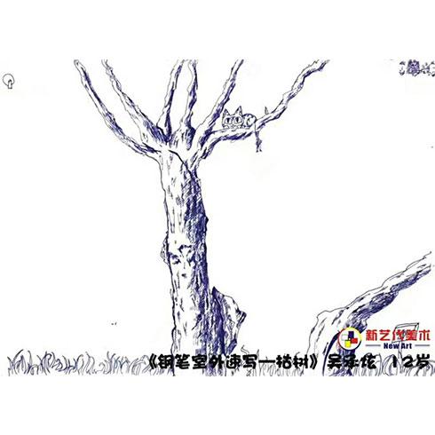 新艺代美术培训-钢笔室外速写枯树