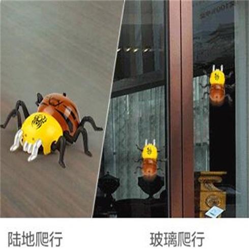 淘气神童益智生活馆-到处爬不织网的蜘蛛