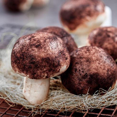 姥娘包子-烤菌菇