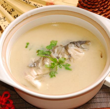 全鱼道-营养鱼