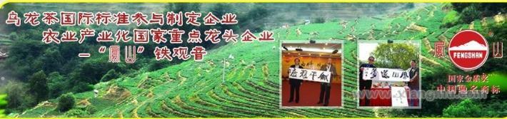 乌龙茶行业标杆品牌安溪铁观音集团招商加盟【加盟,品牌批发市场,加盟